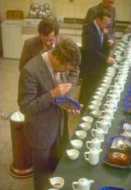 Koffie-proeven